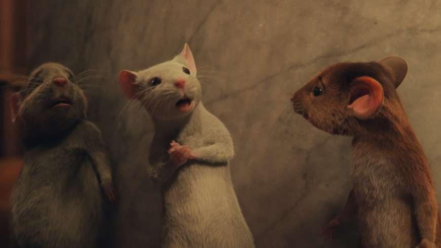 Sacrées Sorcières : le film de Robert Zemeckis en images