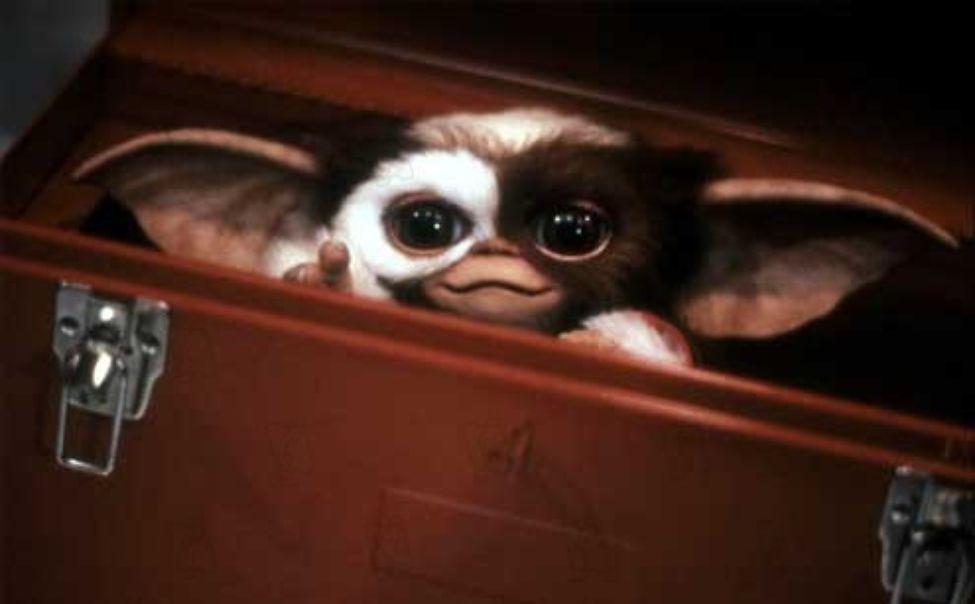 Gremlins : bientôt en série animée